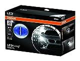 Osram LEDriving FOG PL Blau, Nebelscheinwerfer, LEDFOG103-BL, 1er Faltschachtel