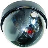 Elro CS44D Caméra factice dôme discrète