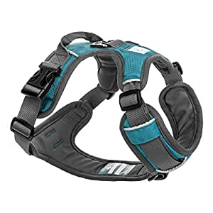 Embark Pets Adventure Dog Harness, Easy On and Off with Front and Back Lead Attachments & Control Handle - No Pull Training, Size Adjustable and No Choke (XL Teal Blue)
