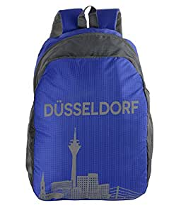 Dussledorf Polyester 20 Liters Grey And Blue Laptop Backpack With Adjustable Strap (DUSS-1807)
