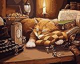 DIY Vorgedruckt Leinwand-Ölgemälde Geschenk für Erwachsene Kinder Malen Nach Zahlen Kits Home Haus Dekor - Maus und schlafende Katze 40*50 cm