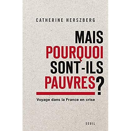 Mais pourquoi sont-ils pauvres?. Voyage dans la France en crise
