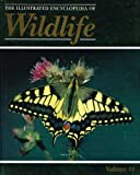 "The Illustrated Encyclopedia Of Wildlife : Volume 44 : "" Fluttering Jewels - Moths And Butterflies "" :"