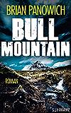 Bull Mountain (suhrkamp taschenbuch)