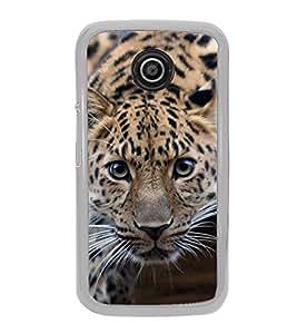 FUSON Tiger Eady To Attack Designer Back Case Cover for Motorola Moto E :: Motorola Moto E XT1021 :: Motorola Moto E Dual SIM :: Motorola Moto E Dual SIM XT1022 :: Motorola Moto E Dual TV XT1025