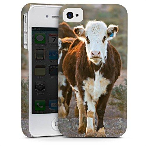 Apple iPhone 5 Housse étui coque protection Vache Vaches Veau Cas Premium mat