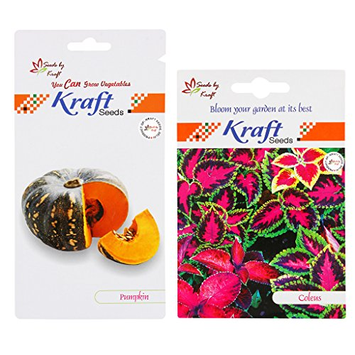 Flower and Vegetable Seeds Combo (2 in 1) – Coleus and Pumpkin By Kraft Seeds  available at amazon for Rs.98
