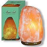 Lampada di sale dell'Himalaya - speciale 10-12kg
