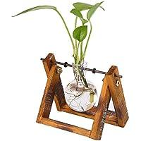 AOLVO Kit de Cultivo hidropónico, jarrón pequeño de Cristal con Soporte de Madera para Flores
