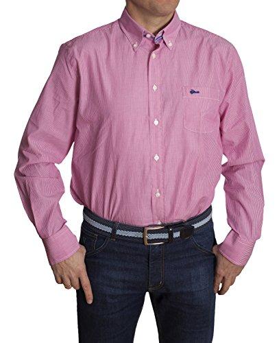 Tienda Calidad Herren Sporthemd Harvard 313 Mehrfarbig (Multicolor 313)