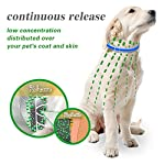 u-picks dog flea collar,6 months flea and tick control protection for dogs cats,adjustable size&waterproof,stop pest bites&itching(blue) U-picks Dog Flea Collar,6 Months Flea and Tick Control Protection for Dogs Cats,Adjustable Size&Waterproof,Stop Pest Bites&Itching(Blue) 51noPMFfI1L