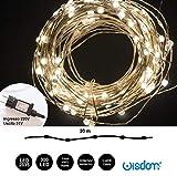 WISDOM LINE Cadena LED Cadena de Luces decoración de Navidad con Pilas Invisible microled E Hilo...