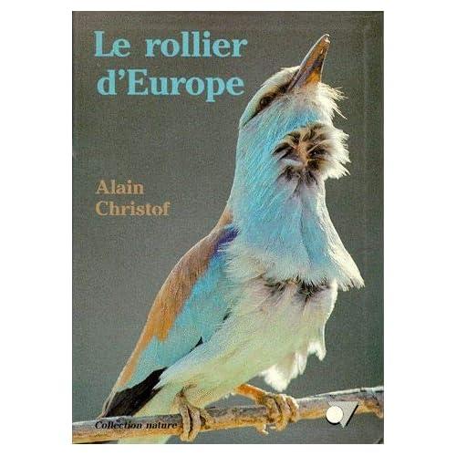 Le rollier d'Europe
