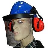 Profi Helm mit Gesichtsschutz und Gehörschutz Forsthelm Schutzhelm Bauhelm blau