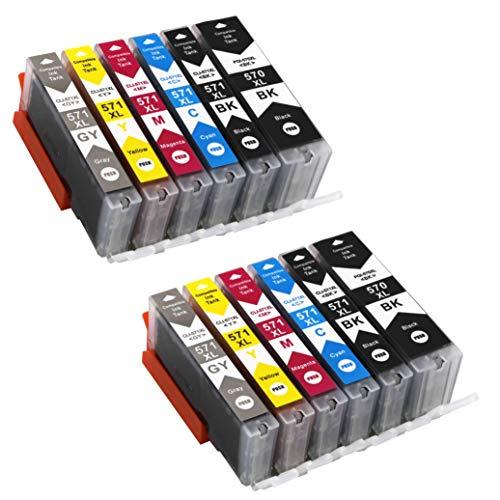 12 Druckerpatronen mit Chip und Füllstandsanzeige kompatibel zu Canon PGI-570 CLI-571 für Canon Pixma MG7700 MG7750 MG7751 MG7752 MG7753 TS8050 TS8051 TS8052 TS8053 TS9050 TS9055 mit Grau