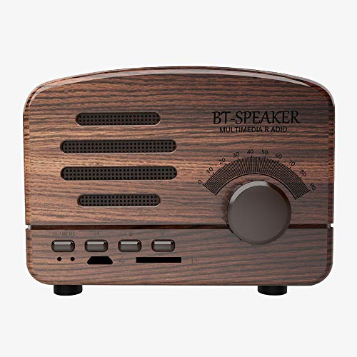 Portable Bluetooth Stereo Speaker Radio,HiFi-Grade Sound Retro Bluetooth Speaker,Support Tablet,Smart Phone,TF Card,U Disk for Travel,Home,Beach,Home