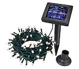 Dehner Solar Lichterkette, 100 LED, 8 Leuchtprogramme, Länge 12 m