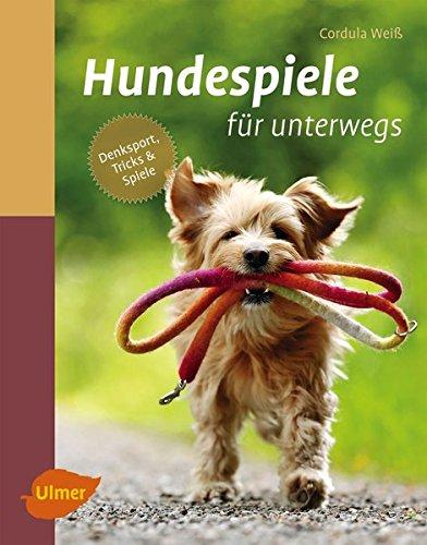 hundeinfo24.de Hundespiele für unterwegs: Denksport, Tricks und Spiele
