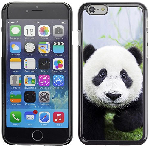 Graphic4You Ni Hao China Karikatur Panda Tier Design Harte Hülle Case Tasche Schutzhülle für Apple iPhone 6 Plus / 6S Plus Design #1