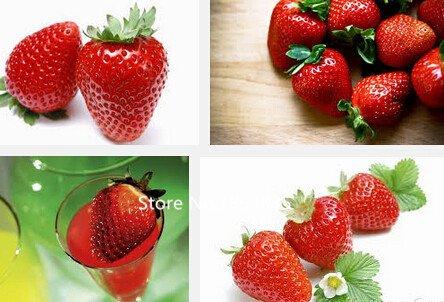 Jardin des Plantes 100 pièces de Super grande Seeds Red Strawberry, pots de culture de fraises récolte de fruits bio Graines, parfum maison & gard