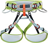 Climbing Technology Ascent 7H146CDCTSTD Imbracatura, Verde/Grigio, M/L