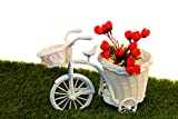 Pindia Random Color (Only Ribbon) Tricycle Bike Design Rikshaw Decorative Flower Vase Large