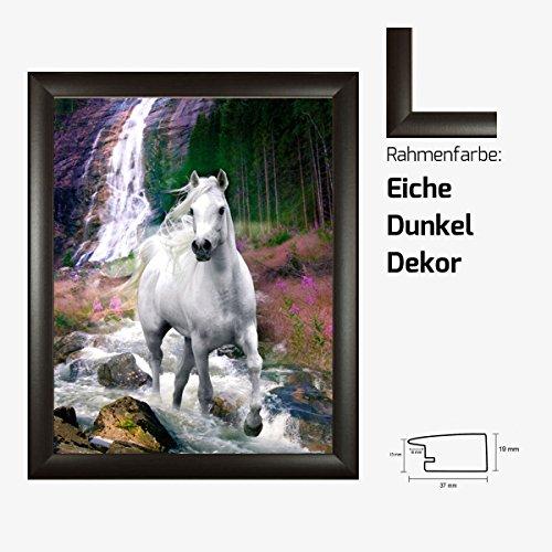 Kunstdruck Poster - Bob Langrish White Horse weißes Pferd Waterfall Wasserfall 40 x 50 cm mit MDF-Bilderrahmen Pisa & Acrylglas reflexfrei, viele Farben zur Auswahl, hier Eiche Dunkel Dekor -