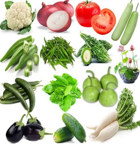 ShopMeeko SEED Blumenkohl, Zwiebeln, Tomaten, Flasche, Lady Finger, grüner Paprika, Ridge, Spinat (Palak), Runde (Tinda), Brinjal, (kheera) und Daikon (Mooli) Seed (25 pro Paket) Lady-flasche