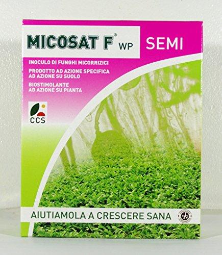 inoculacion-de-hongos-micorrizicos-de-wp-micosat-f-de-semillas-de-1-kg