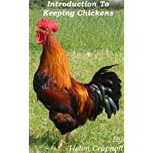 Introduction to Keeping and Breeding Chickens