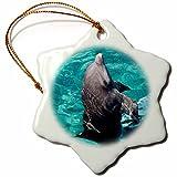 3dRose orn_86731_1 Mexico, Cozumel Dolphin at Chankanaab Park SA13 MDE0078 Michael Defreitas Snowflake Ornament, Porcelain, 3-Inch