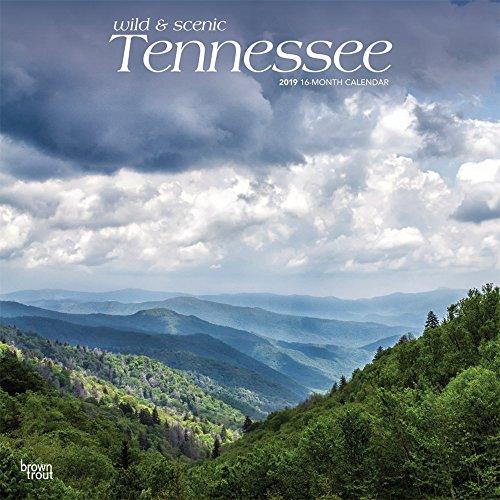 Tennessee Wild & Scenic 2019 Square