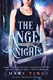 The Angel Knights (The Angel Knights Series) by Mary Ting