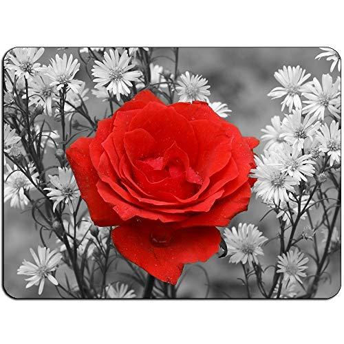 (Präzision gesäumt) Rote Rosen-Schönheit Mousepad - Nicht Beleg-Mausunterlage