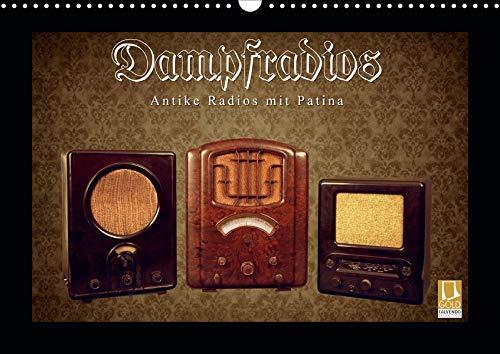 Dampfradios - Antike Radios mit Patina (Wandkalender 2020 DIN A3 quer): Eine bunte Mischung alter Rundfunk-Schätzchen (Monatskalender, 14 Seiten ) (CALVENDO Technologie)