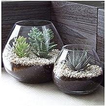 MyGift - Lote de 2 jarrones redondos de cristal decorativos para velas, terrarios y plantas artificiales