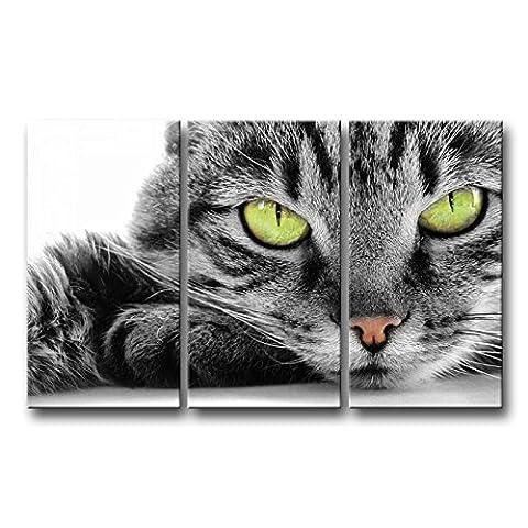 3pièces Noir et Blanc Décoration murale Tableau œil Vert Cat photos des Impressions sur toile Animal le Décor à l'huile pour Home moderne Décoration d'impression