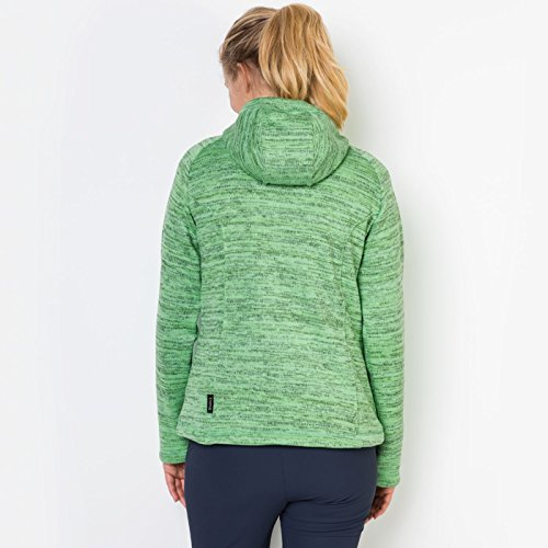 Jack Wolfskin Aquila Hooded Jacket Women, Giacca di Pile Donna Verde (Spring Green)