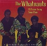 Songtexte von The Whatnauts - I'll Erase Away Your Pain