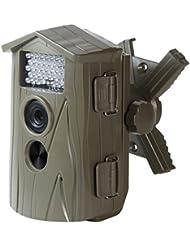 Technaxx Nature Cam TX09 Caméra de surveillance 5 Mpix Marron 6.1cm, microphone, nouvelle version temps de declenchement 1,1 seconde