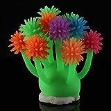Hard Bone Bunter Aquarium Coral Ornament Urchin Ball für Aquarium Dekoration