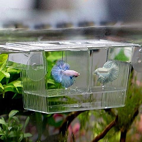 Hrph De manera encantador peces de acuario tanque del Guppy doble del criador de la Crianza Caja Trampa