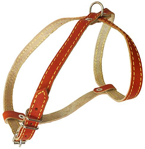 Real Leather Dog Harness, 12″-16″ Chest Size, 1/2″ Wide, Yorkshire Terrier, Pomeranian