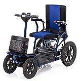 Krankenfahrstuhl Elektromobil Elektrisch 4 Räder Bis 23 Km,300w*2 E Scooter Motor Mit Straßenzulassung,seniorenfahrzeug Seniorenmobil Elektrostuhl E-mobil Elektroroller,12ah Batterie