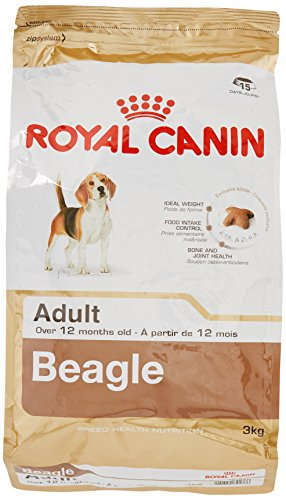 Royal Canin Beagle Adult 3 kg, 1er Pack (1 x 3 kg)