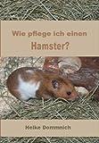 Wie pflege ich einen Hamster?