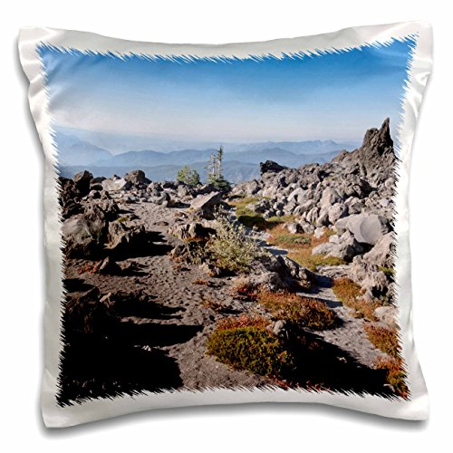 Danita Delimont - Washington - USA, Washington, Mt Saint Helens Monitor Ridge Trail - US48 MFR0069 - MFR - 16x16 inch Pillow Case (pc_148342_1)