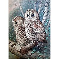 DIY 5D Diamond Painting by Number Kits, Full Drill Crystal Rhinestone Embroidery Pictures Arts Craft for Home Wall Decor Gift,White Owl
