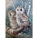 Kit completo para crear un cuadro por números con piedras de cristales brillantes, regalo de manualidades para colgar de la pared y decorar el hogar, White Owl, 11.8*15.7inch