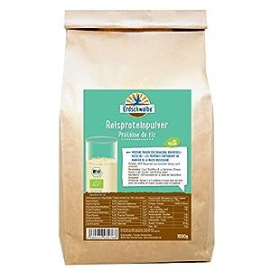 Erdschwalbe Bio Reisprotein – 82% Proteingehalt – Veganes Eiweißpulver – 1 Kg
